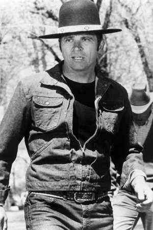 Tom Laughlin as Billy Jack